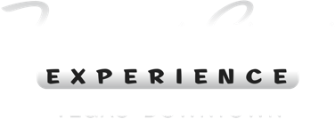 Fremont Street Experience Logo